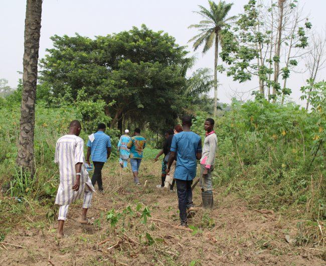 Besichtigung des Landes durch die Ola Ireti Children's Foundation